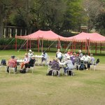 afternoon tea on the lawn...