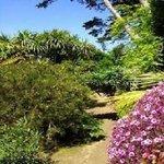 Jardin exotique Delaselle
