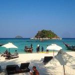 Den flotte stranden rett foran hotellet