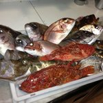 Fresh selection of local fish.