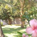 Enjoy the beautiful garden