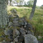 Scottish Stones