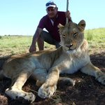 Cat Walk - the highlight is get up close and personal with the lions