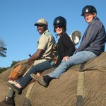 Our Elephant ride with our guide, Silas