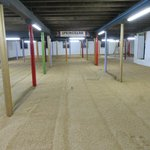 Warehouse for sprouting barley or  parties