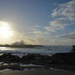 la côte à Oualidia