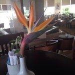 Fountain bar / lobby at Dreams Beach...behind pretty flower!