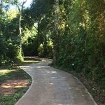 El sendero por el cual se va a las habitaciones