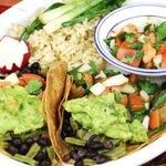 Nopal Tacos