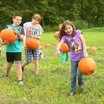 Fall is Fun at Apple Blossom. Pick your own pumpkin
