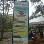 Touring Jamaica