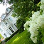 Hotel - Garten mit prachtvollen Hortensien