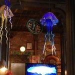interesting jellyfish hanging above bar