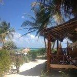 View from hammock cabana 8!