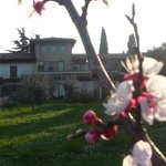 veduta del bed and breakfast dal giardino