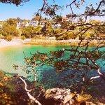 Love Shelly Beach