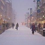 winter Tromsø