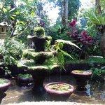 First impression of Bali Eco