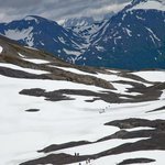 Harding Ice Field Trail