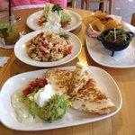 Shrimp Quesadillas, Calamari, Iceberg wedge, Guacamole with chips