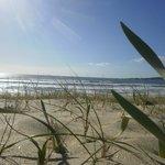 Playa Major a 500m