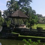 Silent in paradise bali