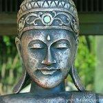 Zen at Villa Flow