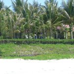 после пляжа территрия отеля