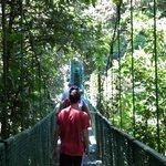 Hanging Bridge in Monte Verde