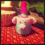 Our bug spray holder for the evening, very attractive knitted pig ��