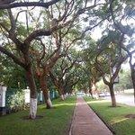 Beautiful walkways outside Taj Pamodzi
