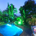 Tropical garden around pool