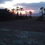 Maramboï camp