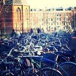 Bicicletas en Museumplein