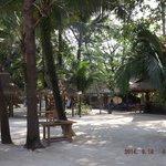 White Sand Beach - Ao Thong Beach Restaurant