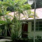 Rooms situated in small bungalows