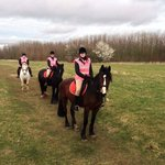 Derbyshire Pony Trekking