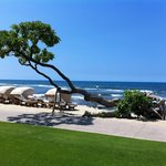 Beach at the Four Seasons Hualalai
