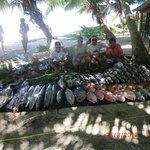 Deep Sea Fishing Catch