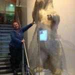 Um urso nos recebe na recepção