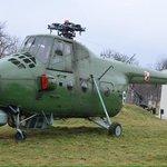 Polish chopper.