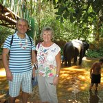 Me, the wife and an elephant. I'm the one on the left !