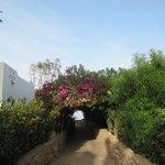 Дорога на пляж отеля Гарем