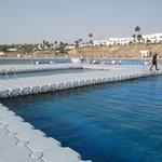 2 естественных бассейна на понтоне центрального пляжа