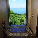 Penthouse bathroom shower