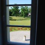 widok z naszego okna