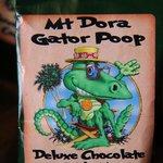 Aligator Poop