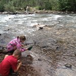 Fantastic fly fishing while kids enjoyed panning for gold.