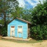 Cabanon bleu du village
