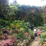 Mr Hunte is working on this end of the garden